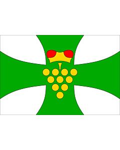 Flag: Municipal flag of Domanín village