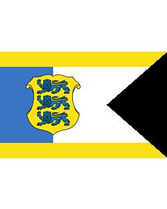 Flag: Estonian Commander-in-Chief