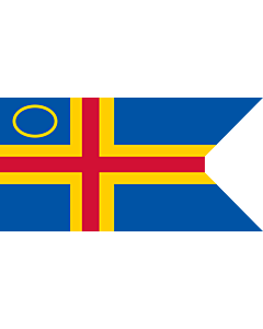 Flag: This image shows a flag