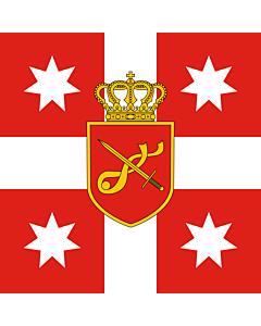 Flag: Georgia. Standard of Chief of General Staff