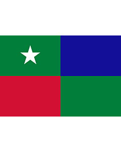 Flag: Standard of the Prime Minister of the Maldives