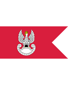 Flag: Polish Ground Forces flag. Adopted in 1993